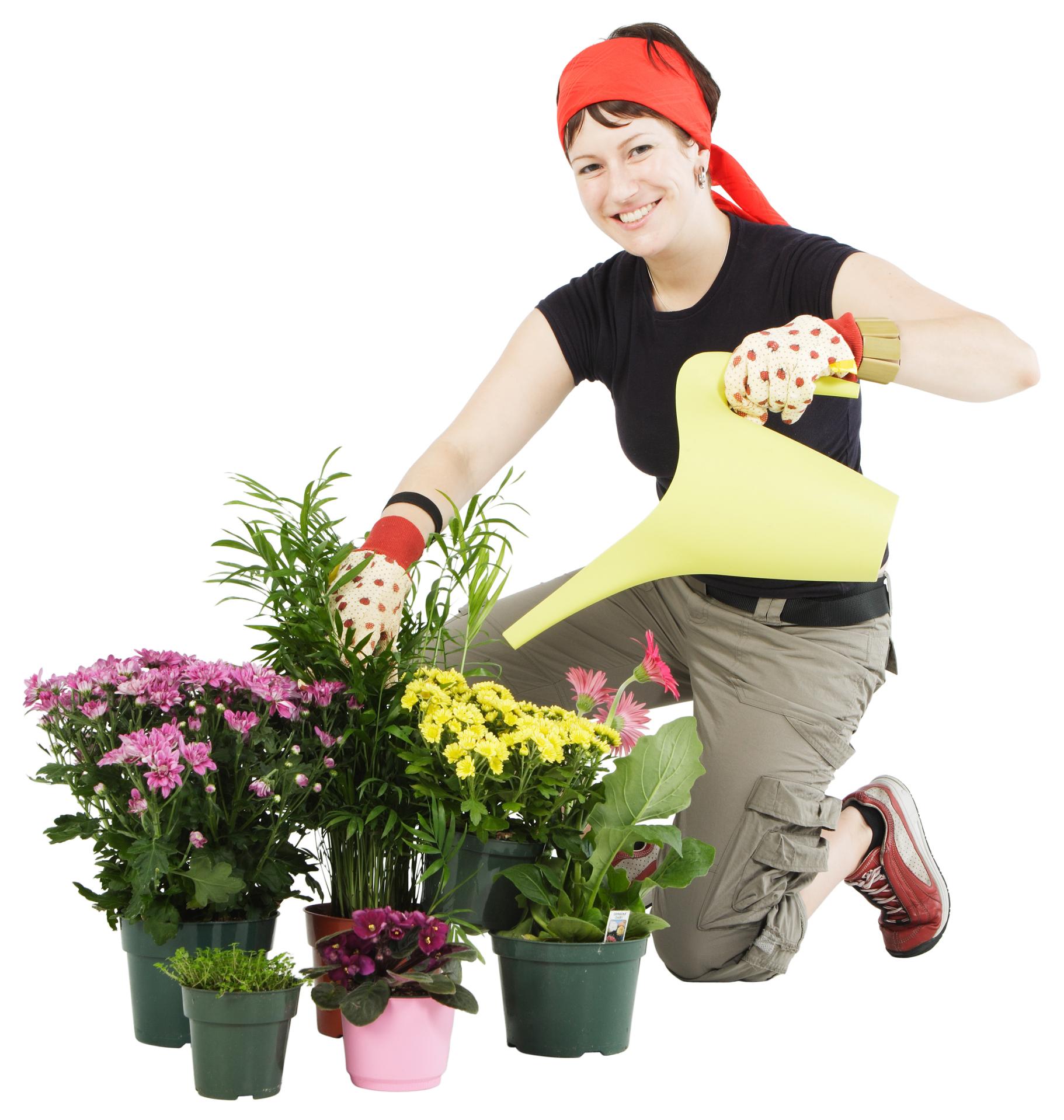 T Ideas For A Gardener