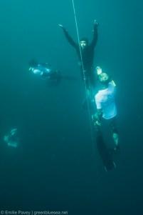 SEA CWT-6692