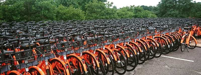 Lexington Explores Bike Share with Green Check Business