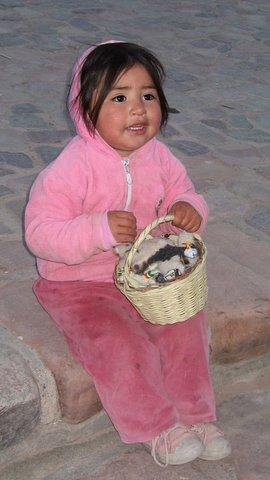 A delightful seller of toy llamas