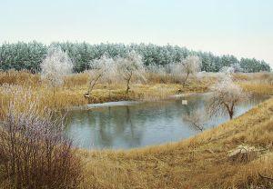 Pond_seepage