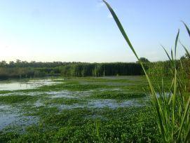 Largest wetland in Argentina
