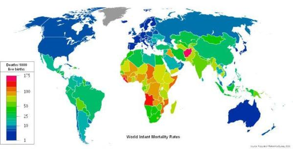 World Infant mortality rates in 2008