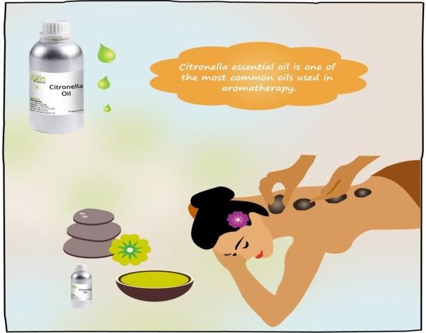 Citronella Oil in Aromatherapy