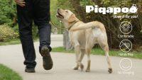 Piqapoo