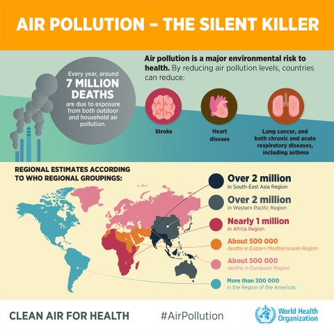 Air Pollution Info-graphic by WHO
