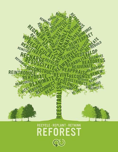 reforestation campaign green cloud solutions. Black Bedroom Furniture Sets. Home Design Ideas