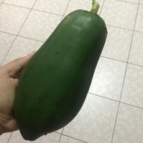 Carica Papaya: Papaya