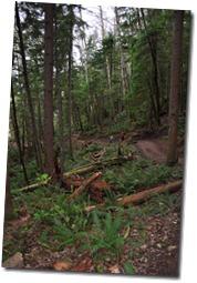 Highpoint Hike 012
