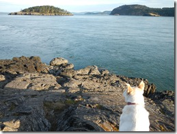 Deception Pass Boys Outing 125
