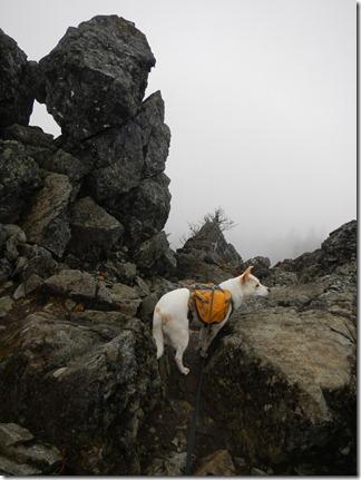 Mount Si Hike 045