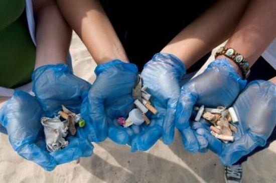 adopt a beach event2