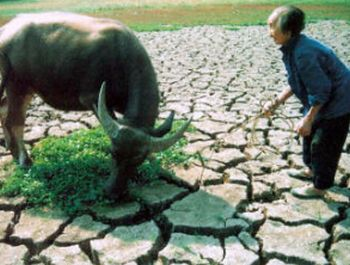 china to face severe drought 9