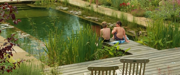 How To Make A Natural Swimming Pool Green Diary Green