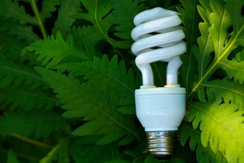 Eco friendly green light