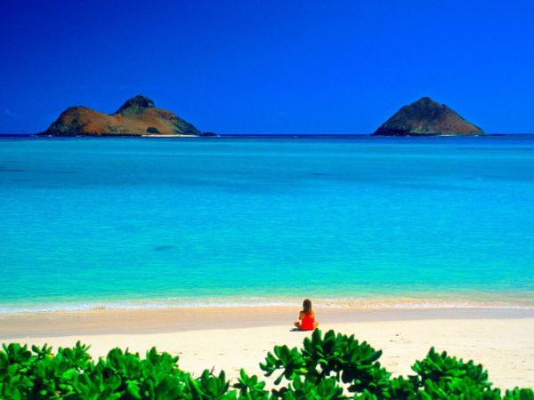 Eco friendly islands