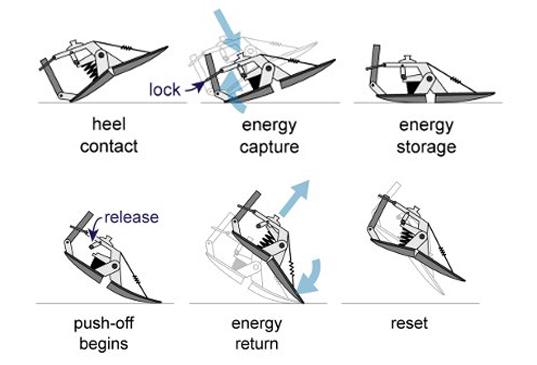 energy foot 2