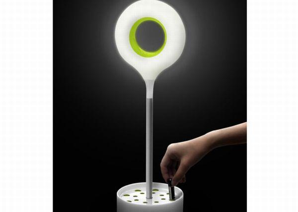 Energy Seed street light