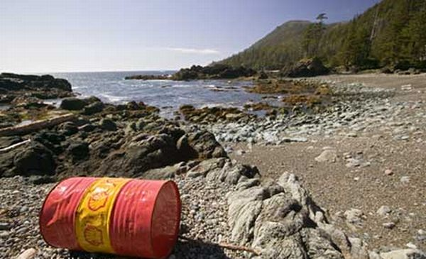 Five things you can do to reduce ocean pollution