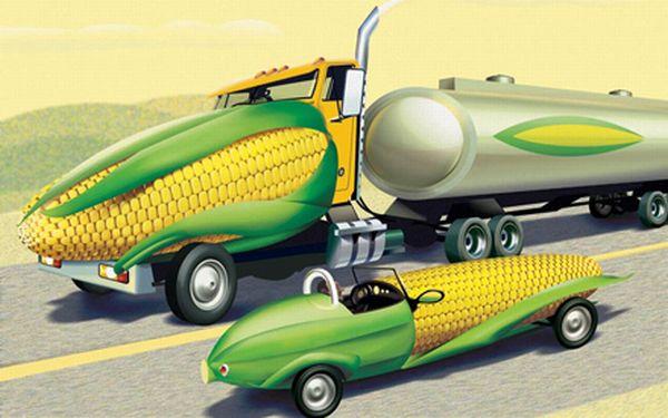 Flexible fuel vehicles