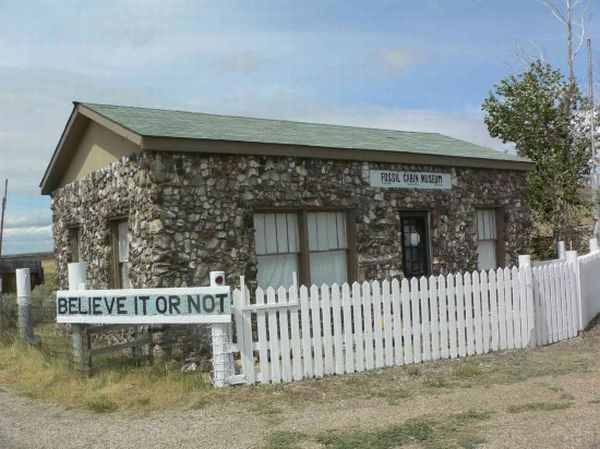 fossil cabin3 550x412