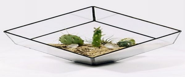 Glass planters