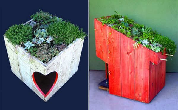 Green roof Animal Homes