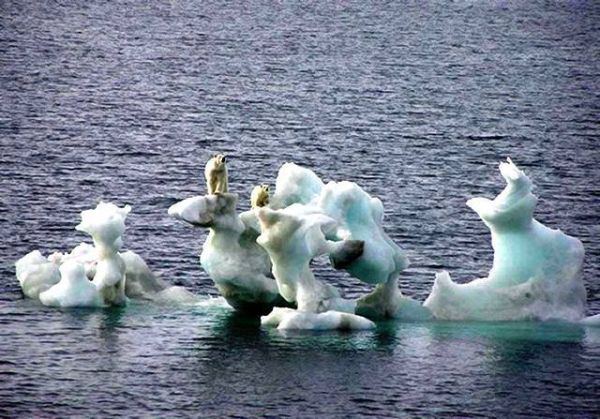 Halting Global warming