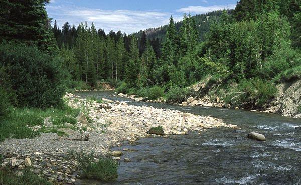 Hoback River