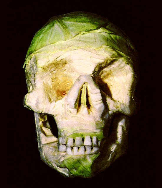 incredible skull sculptures made from fruits and v