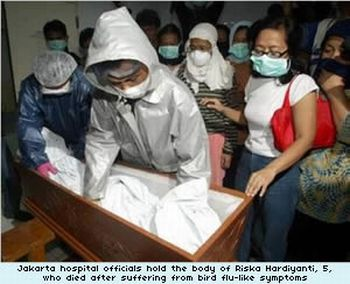 indonesia bird flu epidemic