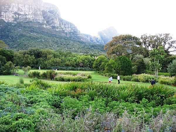 Kirstenbosch National