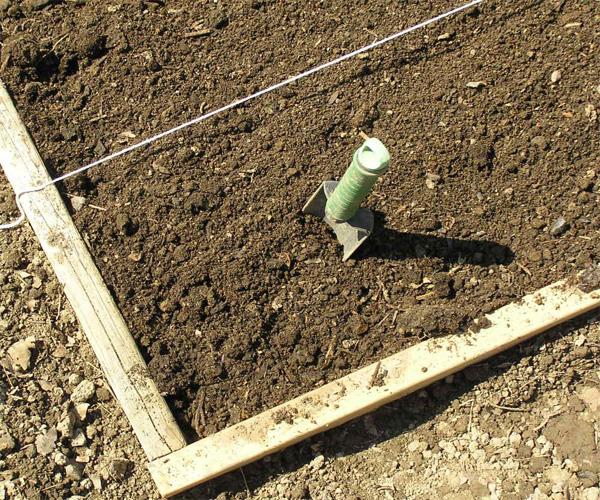 kitchen garden soil