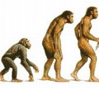 know the evoluiton by 3000 9