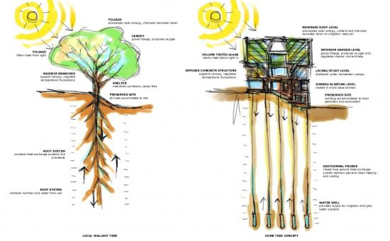 large sustainable tree house 21