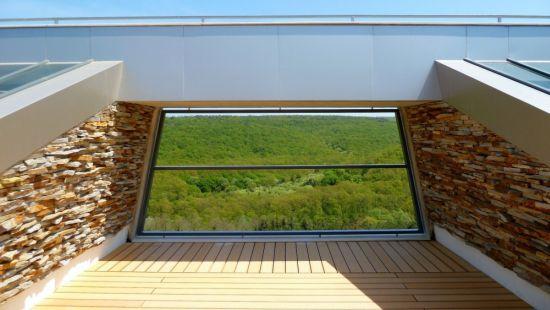 large sustainable tree house 4