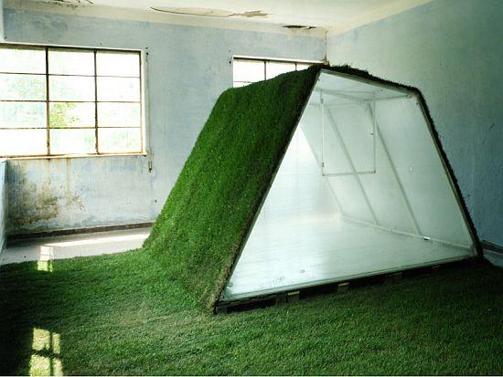 lawn house 6