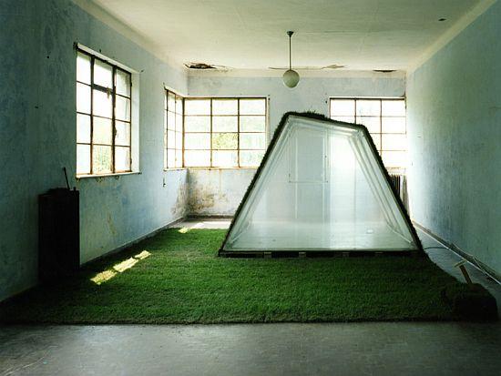 lawn house 7
