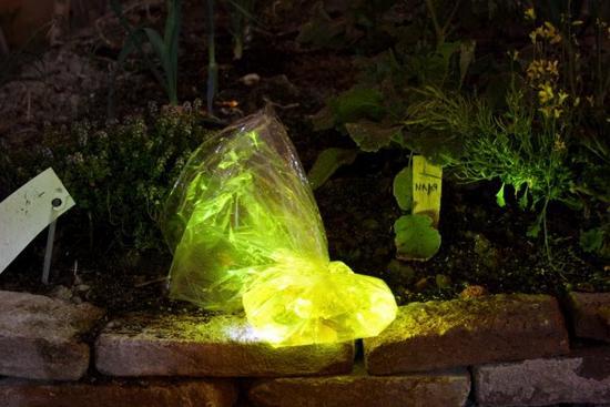 luzinterruptus water is gold installation 1