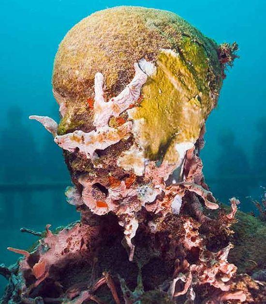 moiliniere bay underwater museum 3