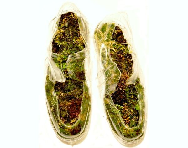 naturas insoles made with moss and rocks 4