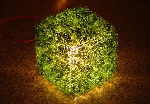 Nature Lamp