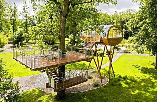 oval tree house 2