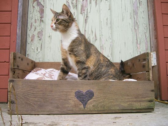 pet beds made from reclaimed materials 3