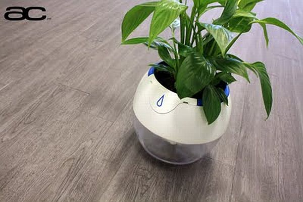 Plant Pod