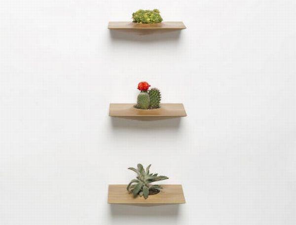 Plant Pods by Domenic Fiorello 3