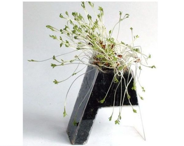 Plant Roots Furniture