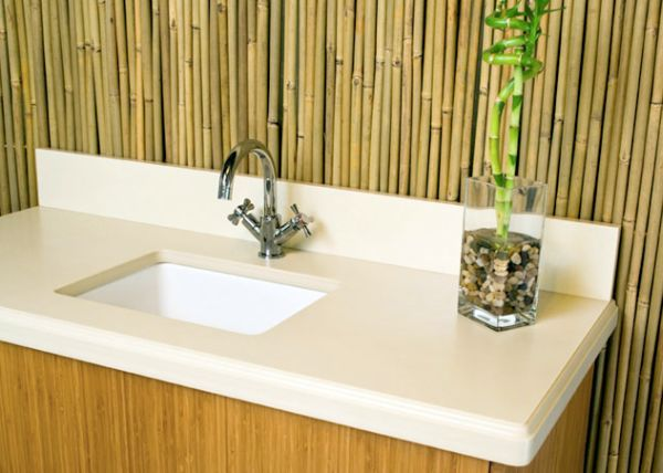 Recycled paper and bamboo countertop
