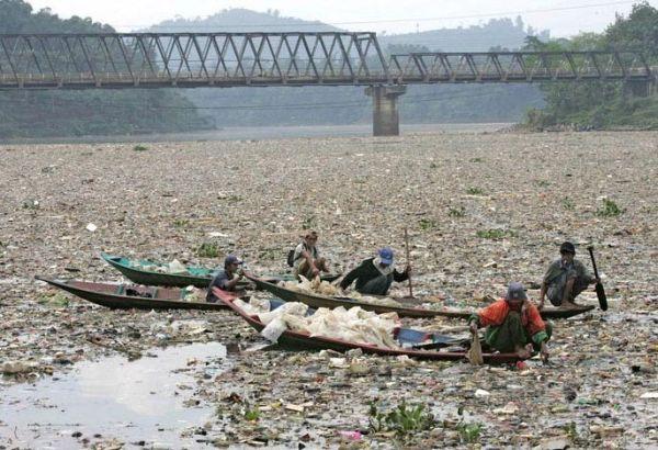 Restore ocean habitat