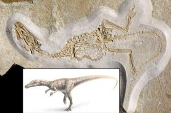 scaly dinosaur